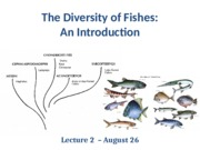 2- Diversity of Fishes2015online