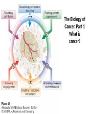 CancerBiologyPt1_forprinting.pptx