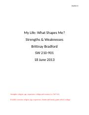 SW 210 Strengths and Weaknesses Paper