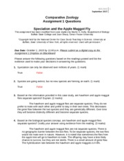 essay culture topics hamlet