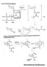 Organic Chemistry II - Activating Group Notes