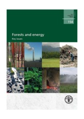 Forest and energy