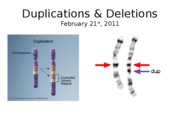 Lecture_17_Duplications_&_Deletions_2011_2