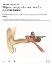 KU gene therapy holds new hope for restoring hearing | The Kansas City Star.pdf