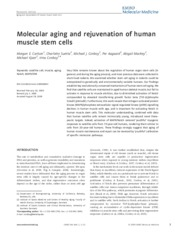 BME 251 Molecular aging and rejuvenation of human muscle stem cells