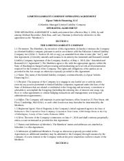 Chapter 28 LLC Operating Agreement