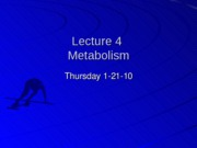 Student%20Lecture%204%20%28Metabolism%29