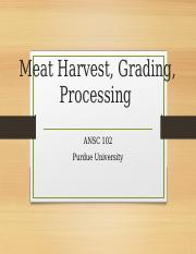 Meat Harvesting and Processing .pptx