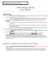 Knudson – Bio 102 Lab – Lab 5 Answer Form.doc