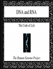 18 Biology 1_30_08 Review DNA and RNA links to disk videos.ppt