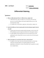 Safranin coloring pages ~ Steps for performing a smear preparation from a liquid ...