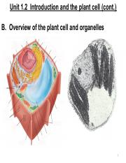 Unit 1.2 Plant Cell and Organelles