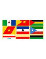 ethnic-flags-620x310.png