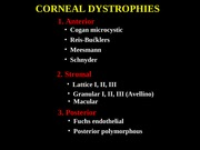 17Corneal Dystrophies
