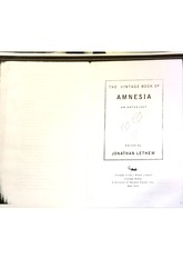 The Vintage Book of Amnesia Excerpt I