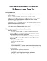 Review - Delinquency and Drug Use