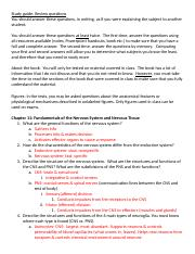 Ch11 Nervous System Study Guide.docx
