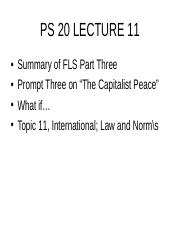 TOPIC 11 INTERNATIONAL LAW AND NORMS