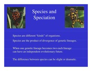 Lecture Notes Species and Speciation