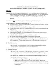 chapter 19 concepts 2013.docx