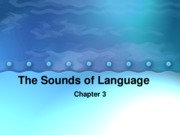 Linguistic Anth. Chapter 3