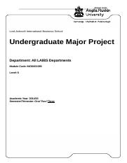 Undergraduate Major Project 2014-15.docx
