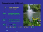22 Determinants of Water Quality 7