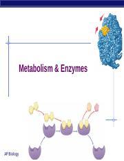 POGIL Oxidative Phosphorylation KEY - Oxidative ...