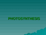 7091438-Photosynthesis