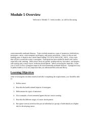Module 5 Overview.docx