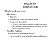 Lecture 6 -  Relationships