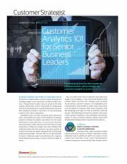 customer_analytics_for_senior_business_leaders_Accessible.pdf