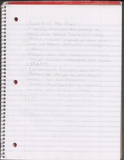 Lord of Flys Notes