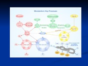 Green World,Blue Planet- Lecture 1 copy.ppt