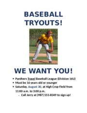 Extend 1-1 Baseball Tryouts Flyer Draft