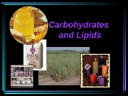 Unit 4 Carbohydrates and Lipids
