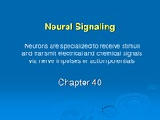 chapter40%20-%20neural%20signalling%20_1_.ppt%20online%20version