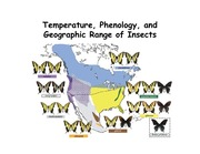 Lecture 3 - Temperature, phenology and distribution
