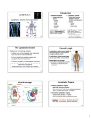 Lecture 5 Lymphatics and Immune - 6 slides