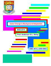 07_ Color Change  Bkg Adaption-2016