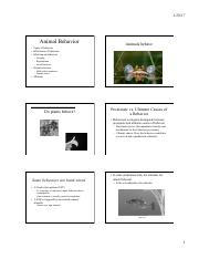 Animal Behavior and Sexual Selection 6 per page