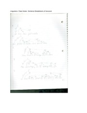 Linguistics- Class Notes- Sentence Breakdowns of structure