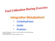 3. Integrative Metabolism (Carbs)