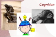 psyc 101 cognition part 1 fall 12