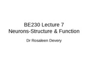 BE230_Lecture_6