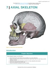 Chapter 7 - Axial Skeleton