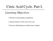 J Citric acid cycle 1
