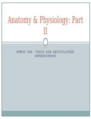 Lecture 7 - Anatomy II.pptx