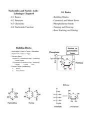 Biochemistry I Lecture 7 Notes