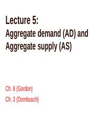 Lecture 5 AD and AS